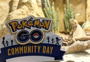Zoo lädt ein: Pokémon-Pirsch im Tierpark