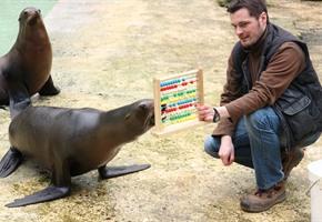 ''Tierische'' Volkszählung: 2.261 Zoo-Bewohner
