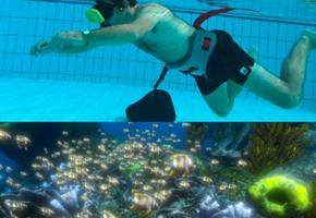 Ozean im Schwimmbecken: Schnorcheln mit VR-Brille im Nettebad