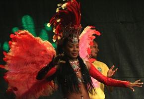 Aus Brasilien geht es nach Afrika: Zoo-Nächte laden ein