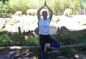 Neu: Yoga im Zoo für die gute Sache